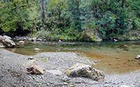 Staveley Stream