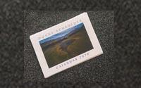 2020 Calendar - Desktop/postcard $18